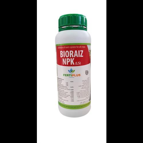 Fertiliser plant development BIORAIZ NPK