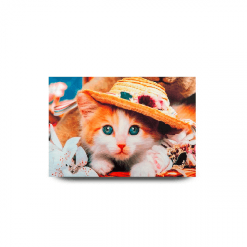 COOL CAT CANVAS PHOTO FRAME