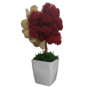 Table Decoration With Eco Green Natural Material
